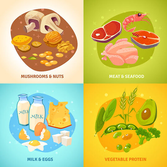 What is amount of protein needed daily