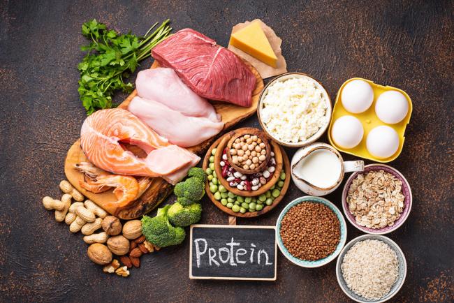 rich protein diet healthcare blog